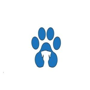 dog allergies skin bumps