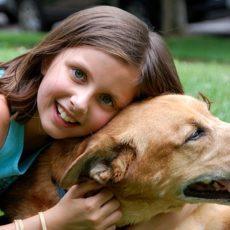 dog allergic to fleas